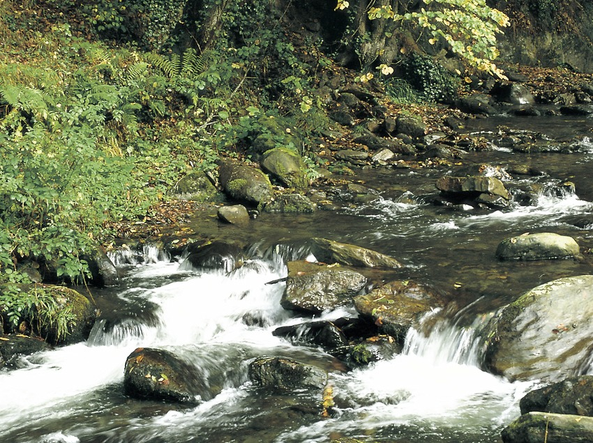 The Margalida ravine  (Turismo Verde S.L.)