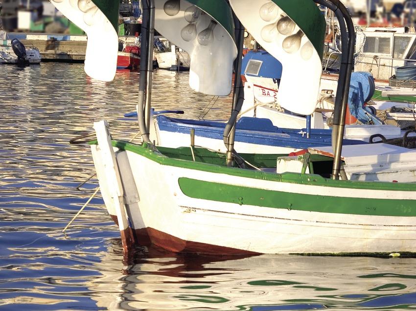 Embarcacions al port  (Miguel Angel Alvarez)