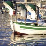Embarcaciones en el puerto  (Miguel Angel Alvarez)