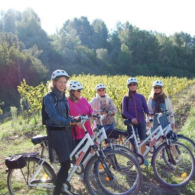 Enoturismo en bicicleta por el Penedès
