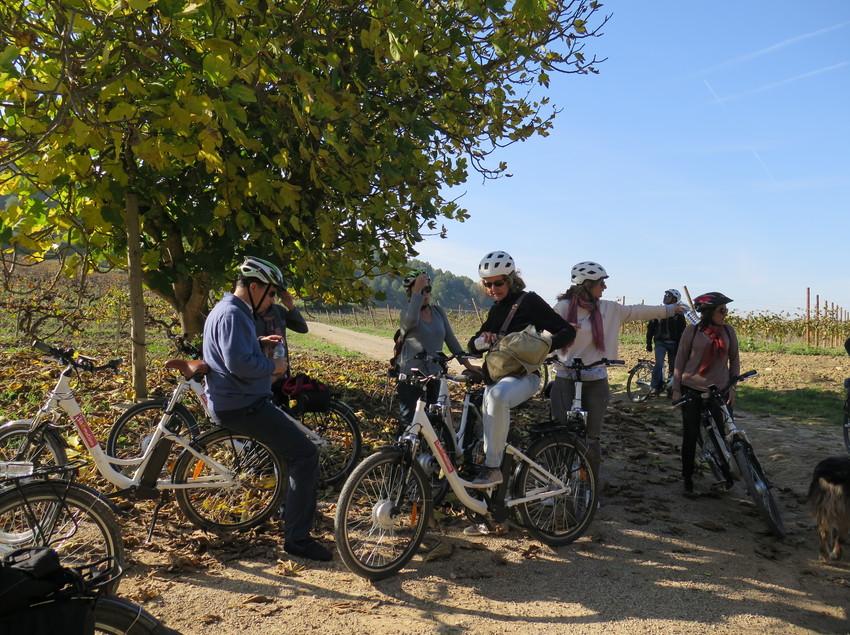 Grupo en bicicleta parado bajo la sombra de un árbol. (Bikemotions)