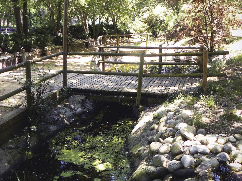 Viles Florides. Arboretum. (Francesc Xavier Castañer)