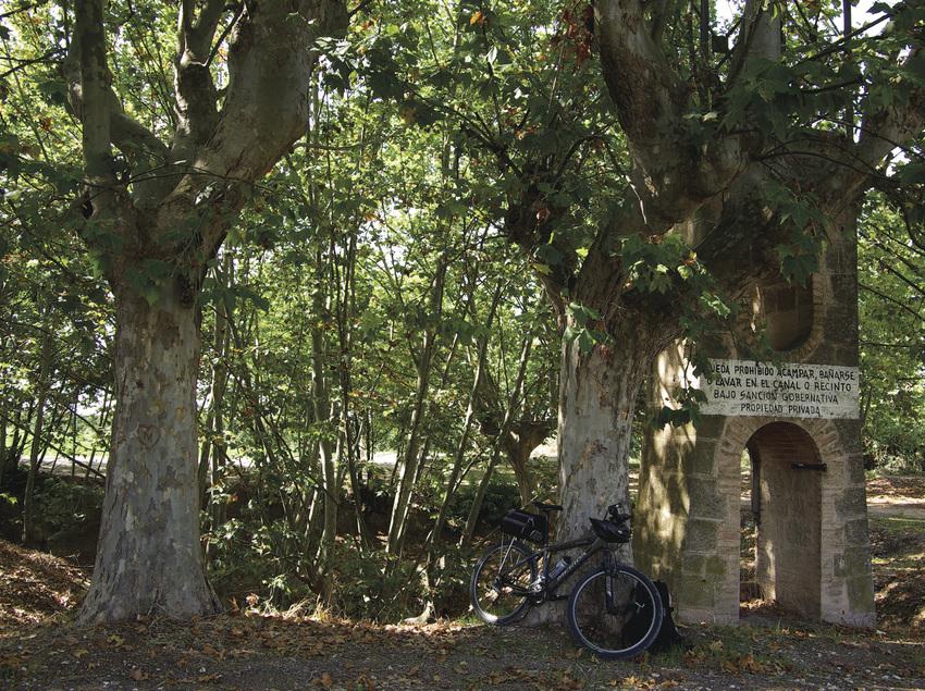 Camino forestal en Mollerussa (Ajuntament de Mollerusa)