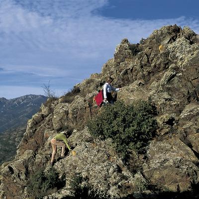 Excursionistes a la serra de l'Albera