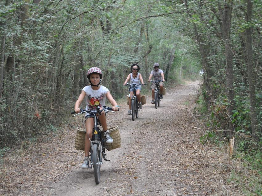 Familia pedaleando por caminos del Alt Empordà en Burricleta (Burricleta Alt Empordà)