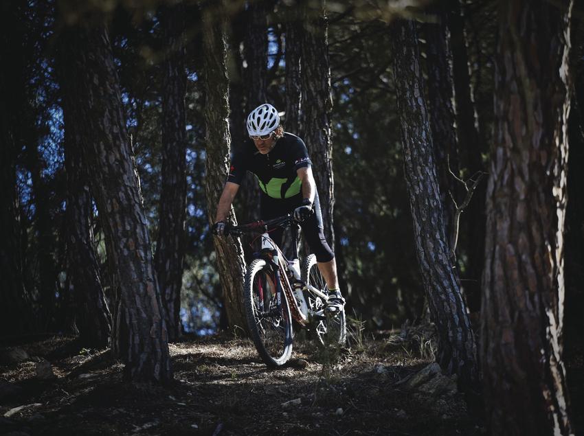 Ruta amb bicicleta a través d'un bosc.