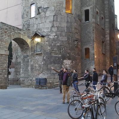 Ruta amb bicicleta per conèixer la tradició vinícola.