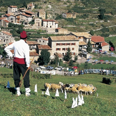 Campionat Internacional de gossos d'atura. Fira de l'ovella