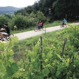 Via Verda amb bicicletes adaptades.