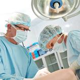 Transplantaments