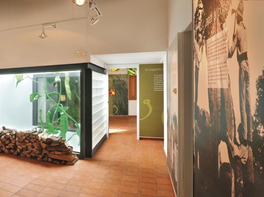 Sala del museu.