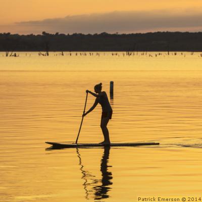 Paddle Surf por el Delta del Ebro