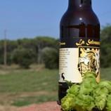 Maridaje de arqueología y cerveza artesana