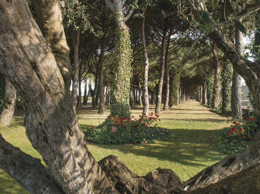 Jardines del hotel El Molí, al lado de la pista de tenis.