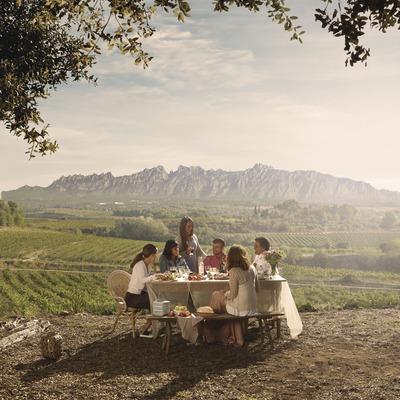Taula rodona entre vinyes a El Penedès