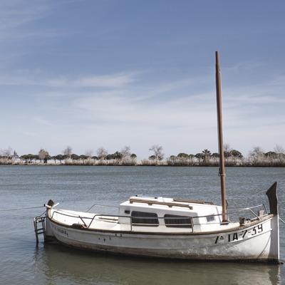 Passejant per l'Ebre amb una barca