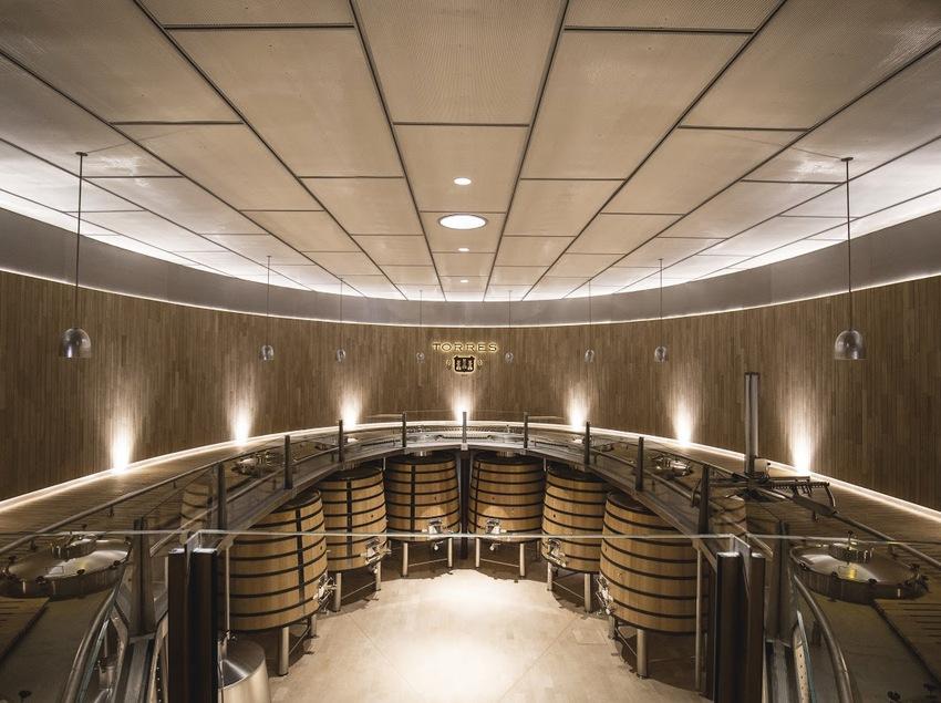 Botas de vino del la bodega Torres de Vilafranca del Penedès