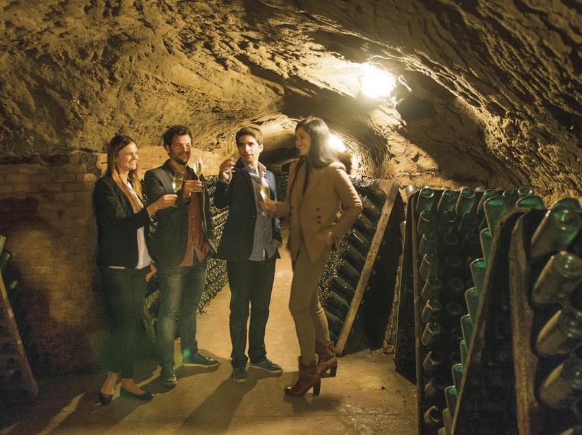 Degustació de cava dintre les bodegas Codorniu