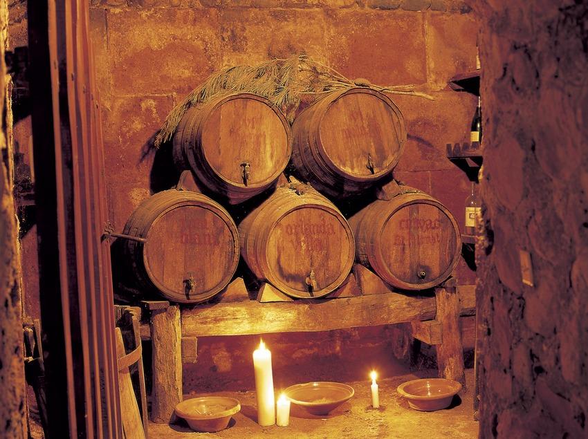 Barrels in a winery  (Kim Castells)