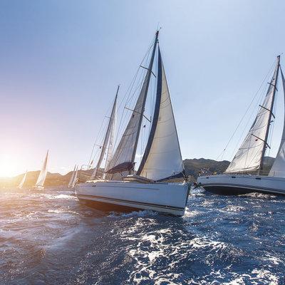 Regata de veleros