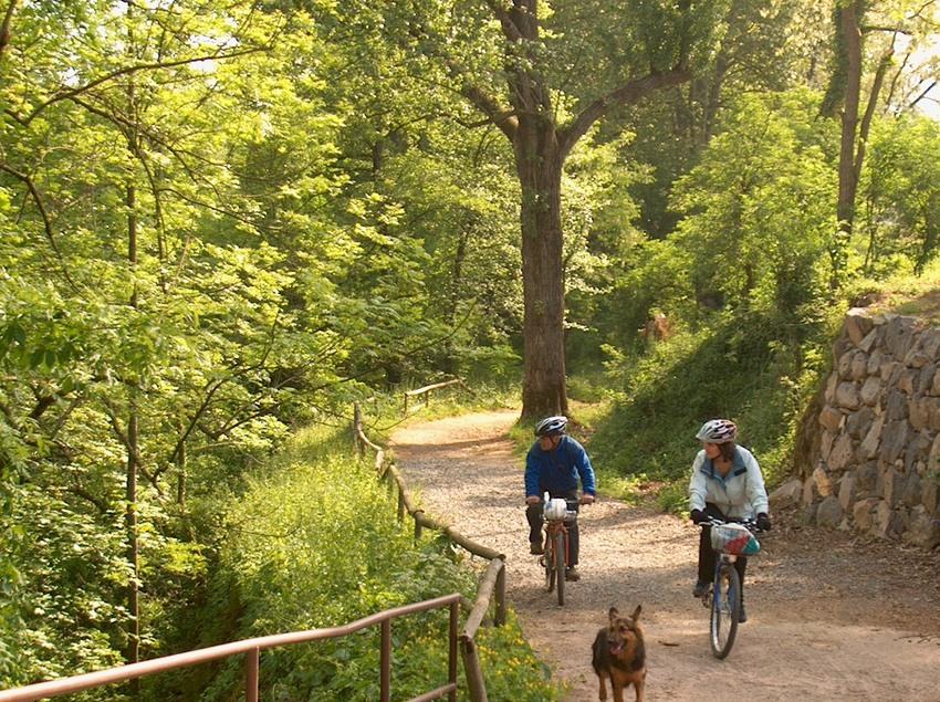 Ciclistes per la via verda