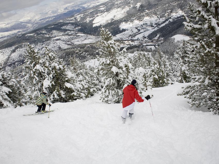 Esquiadores descendiendo entre árboles