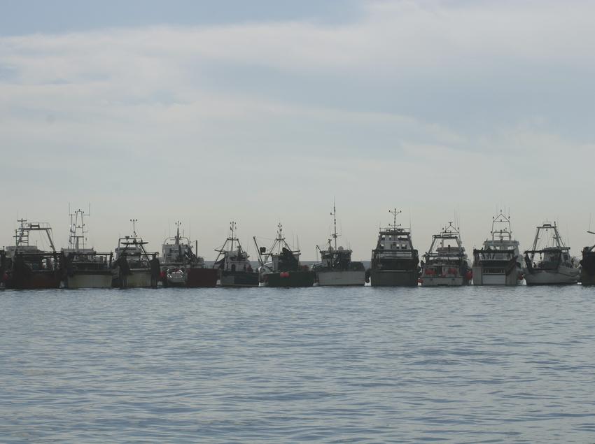 Fila de barcos pesqueros