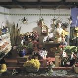 Micromundi. Museu de Miniatures i Microminiatures