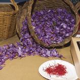 Cistell amb flors de safrà