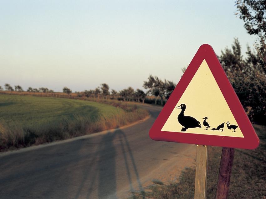 Senyal de precaució al Parc Natural dels Aiguamolls de l'Empordà (Oriol Llauradó)
