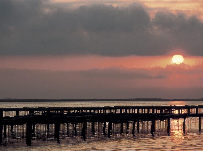 Закат в дельте Эбро (Oriol Llauradó)