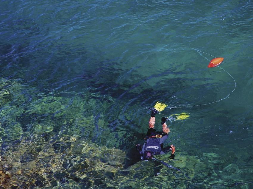 Pesca submarina en la playa de Aiguafreda