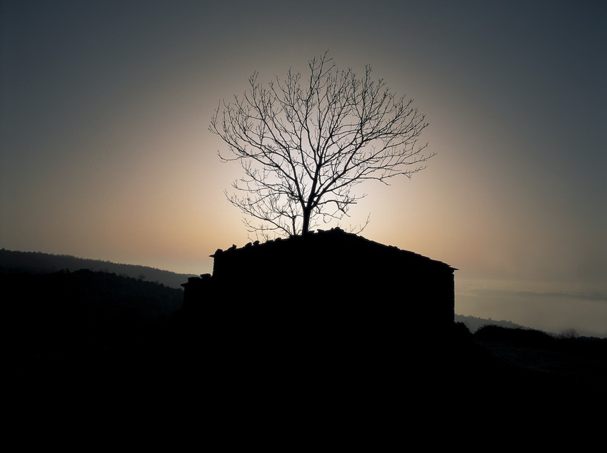 Albada al Pla de la Calma, Parc Natural del Montseny  (Kim Castells)