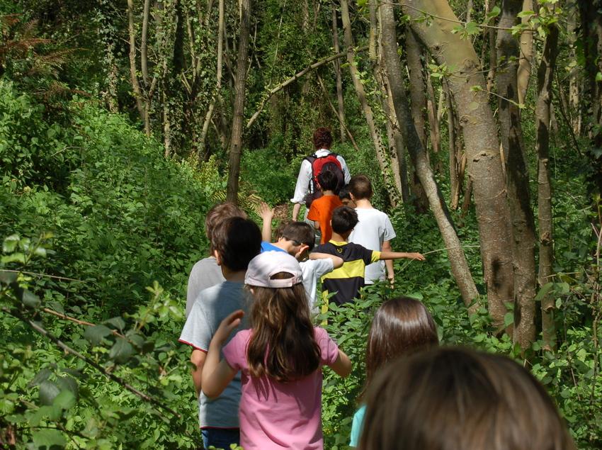 Niñas y niños de excursión por el bosque