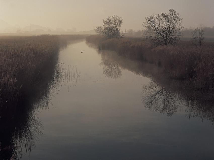 Canal in the Aigüamolls de l'Empordà Natural Park.  (Kim Castells)