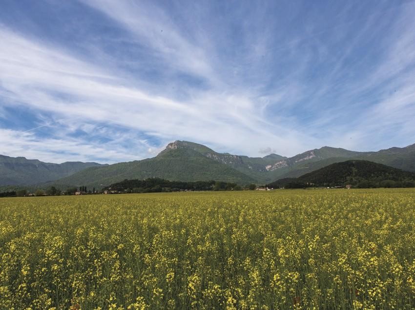 Paisaje panorámico de la Vall d'en Bas