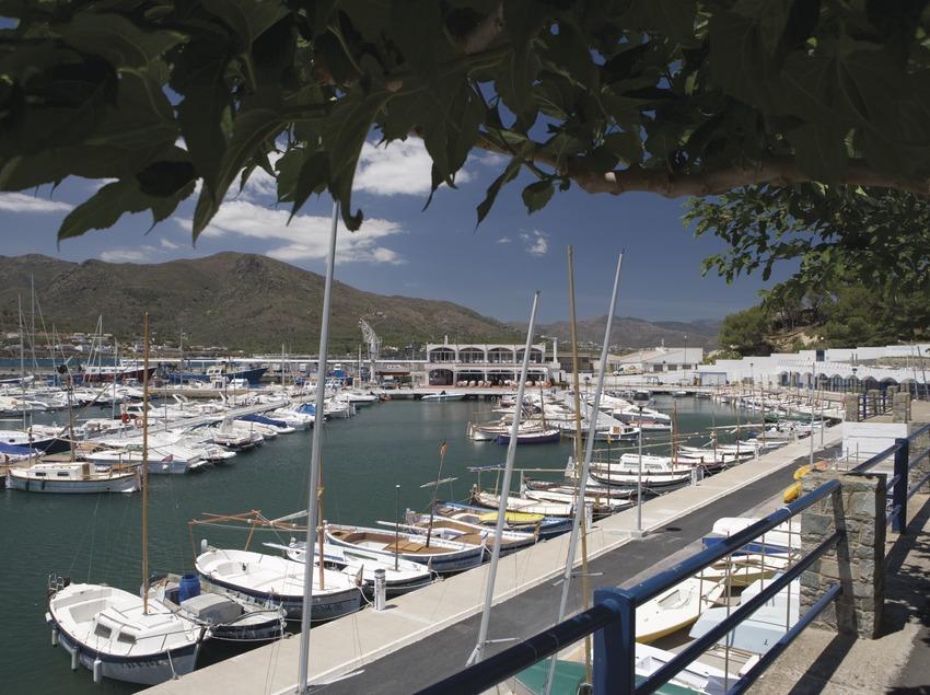 Dock in the marina