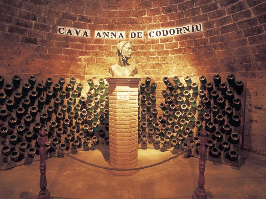 Interior de la bodega Anna de Codorniu