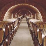 Interior de les caves Codorniu  (Consorci de Promoció Turística de l'Alt Penedès)