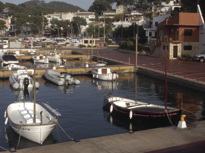 Vista general del puerto deportivo de Llafranc  (Marc Ripol)