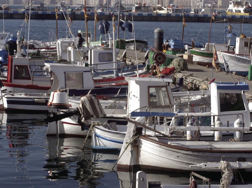 Petites embarcations de pêche dans le port de Palamós  (Marc Ripol)