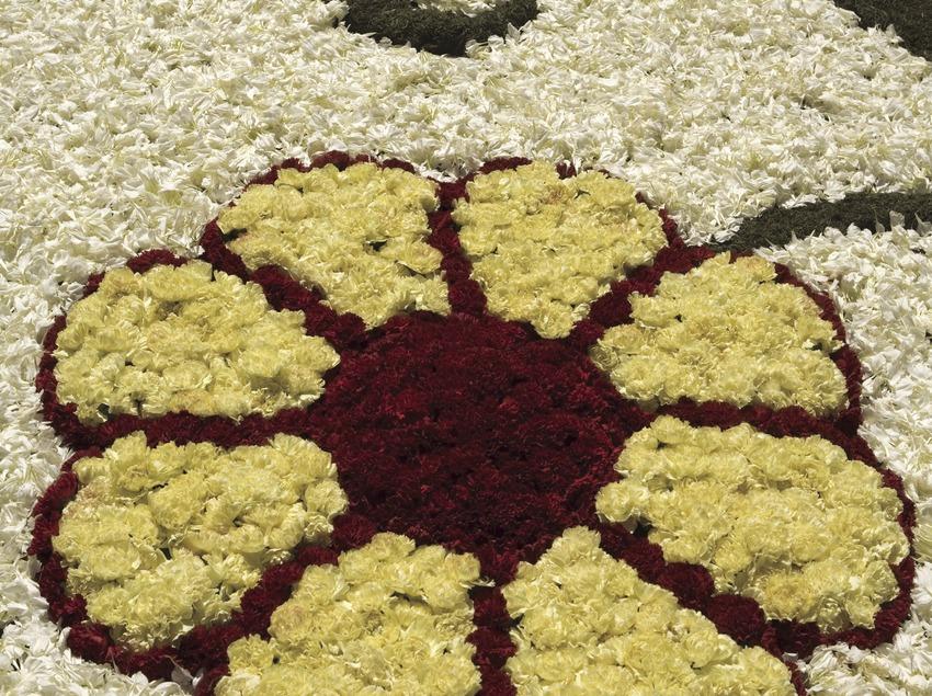 Décorations des rues avec des tapis de fleurs le jour du Corpus Christi.  (Oriol Llauradó)