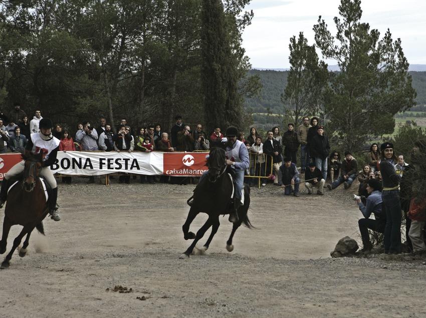 Carrera hípica durante la Fiesta dels Traginers.  (Oriol Llauradó)