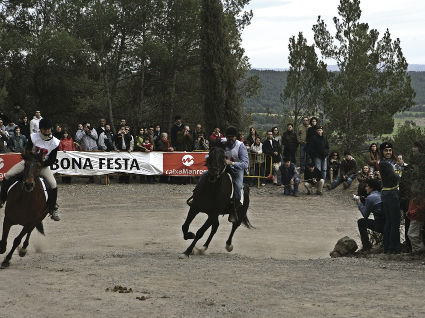 Horse racing at the Traginers festival  (Oriol Llauradó)