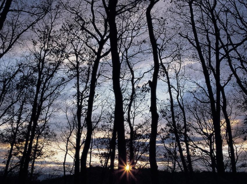 Capvespre a la serra de Cabrera  (Kim Castells)