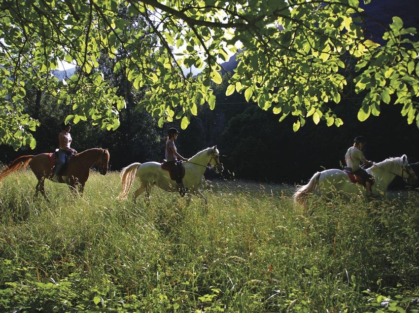 Jinetes a caballo paseando por un bosque de Falset.  (Lluís Carro)