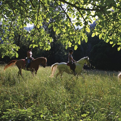 Horse riders in a forest in Falset.