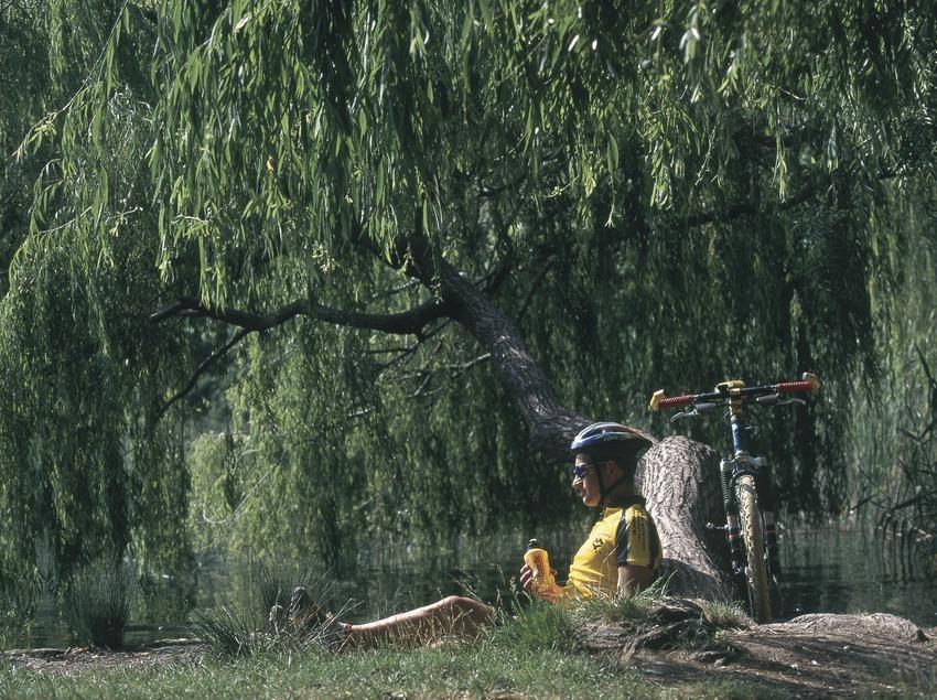 Bicicleta todoterreno. BTT Banyoles.