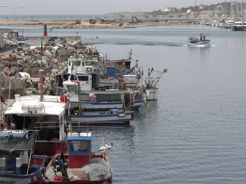 Vista general de la zona pesquera del puerto de Vilanova i la Geltrú  (Marc Ripol)