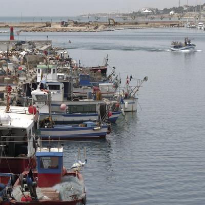 Vista general de la zona pesquera del port de Vilanova i la Geltrú  (Marc Ripol)